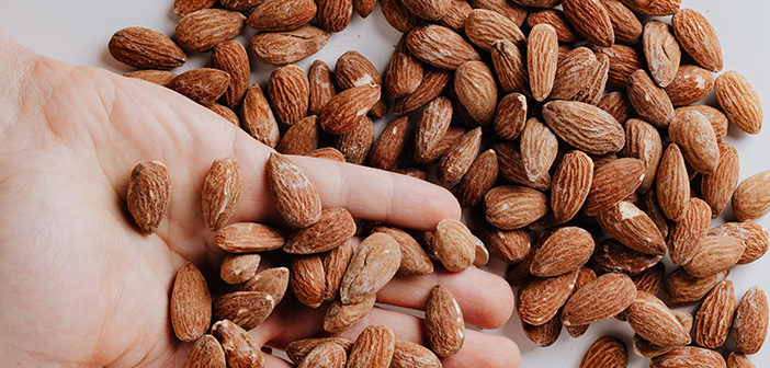 11 easy high protein snacks to get you through the day